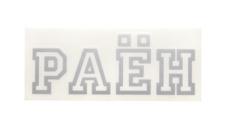 РАЁН Classic Logo, цвет: Серебряный,